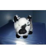 Stubby TY Beanie Baby MWMT 2004 - $4.99