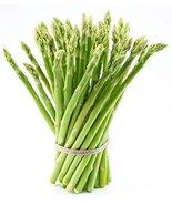 5 2-year JERSEY KNIGHT Asparagus Plants -- organic bare-root crowns - Li... - $9.89