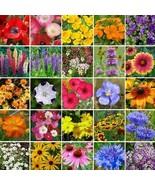 Wildflower Southeast Mix Seeds (1oz+Seeds) - $38.21