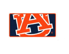 Auburn Logo Mega License Plate - $27.44 - $29.94