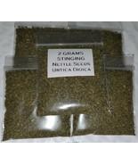 Bulk Combo listing for stinging nettle seeds, artemisia seeds, and morin... - $25.74