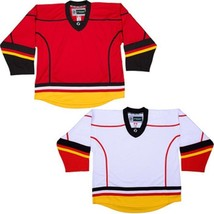 Team Lot/Set Of 10 Calgary Flames Hockey Jerseys Blank Or With Name & Number - $225.97+