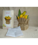 ANIMATED BIRD WITH TULIPS Cracker Barrel in Box Yellow Canary Box  Easte... - $15.00
