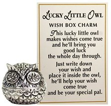 Lucky Little Owl Wish Box Charm With Story Card! - $7.87