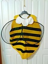 Adult Bumble Bee Costume Three Piece Halloween Hidden Illusions Adult On... - $18.88