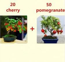 20 cherry 50 pomegranate mix thumb200
