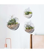 Wall Bubble Terrariums Hanging Wall Planter Wall Mounted Plant Container... - $19.68