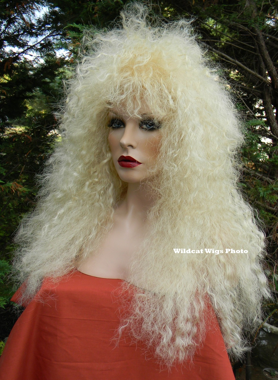 HEAVY METAL Better Costume Wig for Men and Women. Stevie Nicks, Rocker 80's