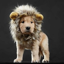 lcfun Lion Mane Costume for Cat Puppy - Pet Wig with Ears, Cat Clothes f... - $10.92