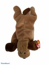 Ty: Beanie Buddy Bones The Dog With Tush Tag 1993 - $98.95