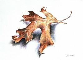 """FALL LEAF - original drawing by Akimova, still life,  8""""x6"""" - $22.00"""