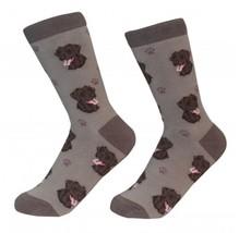 Labrador Retriever Lab Chocolate Socks Unisex Dog Cotton/Poly One size f... - $11.99