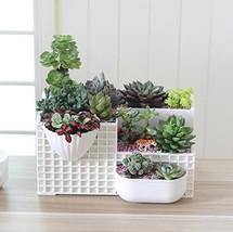 Mecai 12 Inch Modern White Rectangular More Succulent Plant Cactus Plant... - $21.77