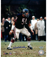 Dick Butkus Bears HOF Signed 8x10 Photograph NFL Authenticated Mounted M... - $89.09