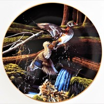 Knowles Michael Budden Skyward Free As The Wind Duck Plate #1 Bradford Exchange - $29.70
