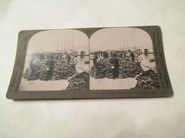 Sponge Market Key West Harbor Florida FL Stereoview Card - $14.99