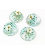 New Fashion 10pcs 20mm Sky Blue Natural Dried White Chrysanthemum Flower... - $15.81