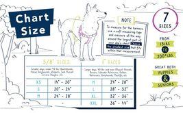 2Hounds Freedom No Pull Dog Harness Medium Paw Paisley WITH Training Leash!   image 4