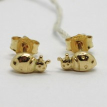 18K YELLOW GOLD EARRINGS, ROUNDED MINI LADYBIRD, LADYBUG, 8 MM, MADE IN ITALY image 1