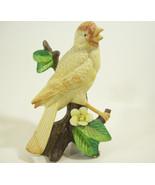 Canary Yellow Bird Figurine Bisque Porcelain Branch Flower Warbler Vintg... - $14.80