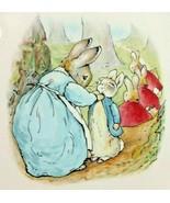 Peter Rabbit Wedgwood Dinner Plate Beatrix Potter Etruria Barlaston Engl... - $28.04