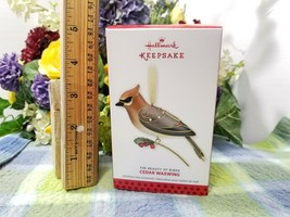 Hallmark Cedar waxwing 2013 Beauty of Birds ornament - $21.75