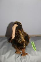 "TY Retired Beanie Buddies Collection 11"" Large Beak Kiwi Bird 1998 Beanie Babie - $19.79"