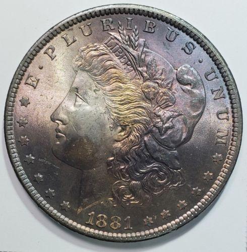1881 Beautifly Toned MORGAN SILVER DOLLAR COIN Lot# 818-63