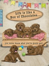 Life Is Like A Box Of Chocolates Labrador Puppies - Metal/Steel Wall Sign - $3.80+