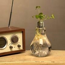 2PCS Lightbulb Glass Flower Planter Vase Terrarium Container Air Plant Pot - $18.37