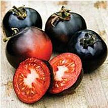 Indigo Rose Tomato Seeds (25 Seed Packet) (More Heirloom, Organic, Non GMO, Vege - $2.73