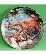 1991 Amy Brackenbury Woodland Creatures Collector Plate, Water Babies - $3.95