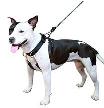 SPORN Dog Training Halter, Black, Medium - $36.37 CAD