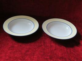 Amen Carter Museum Bluebonnet set of 2 soup bowls excellent  - $49.45