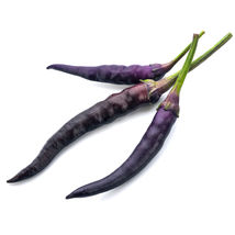 Ship From Us Pepper Seed Hot Cayenne Purple Vegetable NON-GMO Heirloom Seed TM11 - $1,130.36