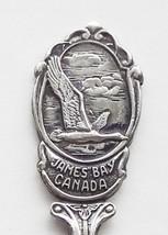 Collector Souvenir Spoon Canada Ontario Quebec James Bay Canada Goose Em... - $12.99