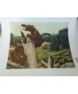 Weyerhaeuser Wildlife Prints 1959 Tacoma Washington 3 prints Elk Bear Deer - $24.00