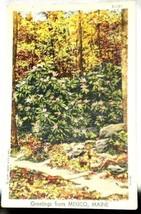 Curt Teich Linen Greetings Mexico Maine Postcard 1947 - $2.23