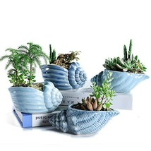 SUN-E 5.5 Inch Blue Conch Ocean Series Ceramic Base Serial Set Succulent... - $23.97
