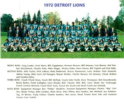 1972 DETROIT LIONS 8X10 TEAM PHOTO FOOTBALL PICTURE NFL - $3.95