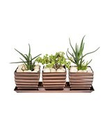 H Potter Herb Succulent Planter Plant Pots Window Sill with Tray Outdoor... - €29,80 EUR