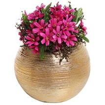 6.75 Inch Round Modern Metallic Gold Tone Ridged Ceramic Plant Flower Pl... - $24.82