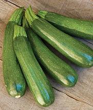 50 Seed Pack,Zucchini Dark Green Squash Seed #IMA7 - $13.99