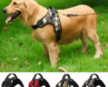 Nylon Heavy Duty Dog Adjustable Training Harness Collar With Padded Extra