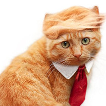 Pet Dog Cat Trump Style Cat Wig Pet hair Costume Head Wear Apparel Toy f... - €20,46 EUR