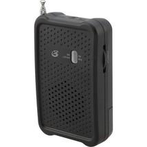 Portable Radio  - $12.99