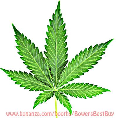 Pot leaf1