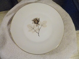 Rosenthal Shadow Rose 9 3/4 inch dinner plate 12 available - $13.22