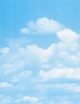 """Poster Board Clouds Design, 22""""x28"""", 10/Case - $12.49"""