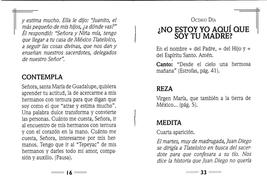 Novena a la Virgen de Guadalupe image 2